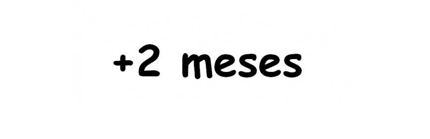 +2 MESES