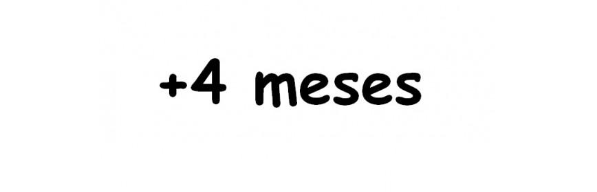 +4 MESES
